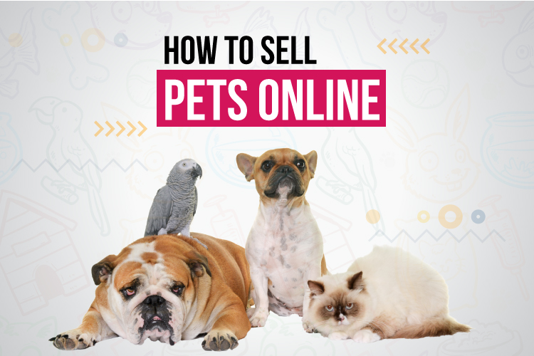 The Ultimate Guide To How To Sell Pets Online